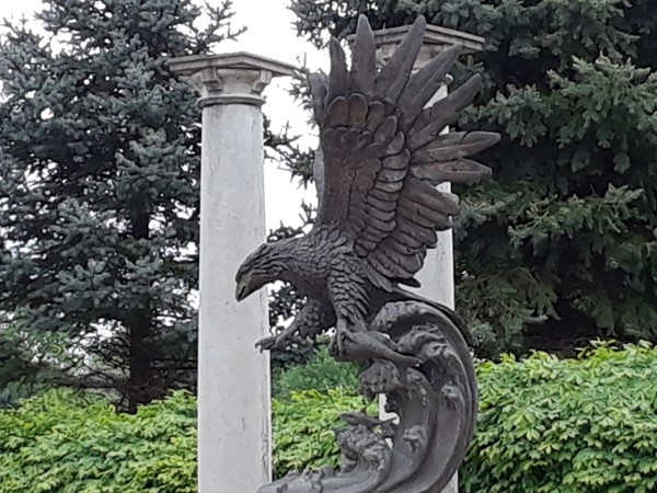 This is a awesome looking eagle at Summit Mill