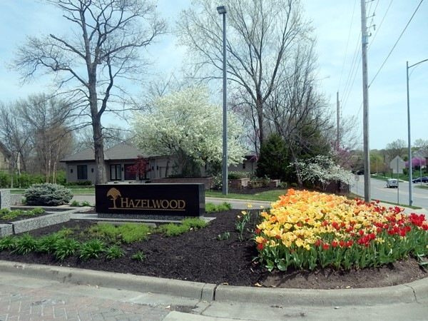 Springtime at Hazelwood