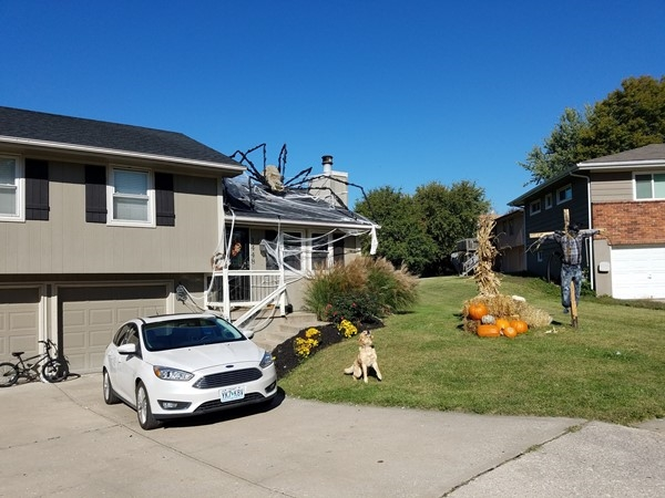 The prize for biggest halloween spider goes to these folks in Westboro