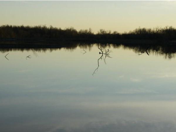 A still autumn evening along Coot Lake