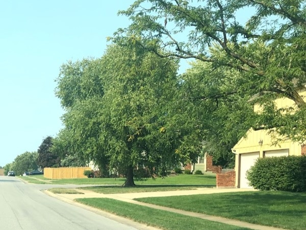 You will surely love this well-maintained neighborhood of Parkwood Acres