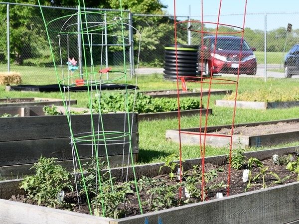 Enjoy a day working in the Community Garden of Byars Road in Grandview