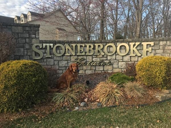 Diego visits Stonebrooke Estates in Gladstone