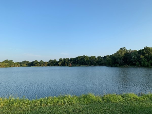 Perfect spot for fishing, boating, dog trails, horseback riding, and just great family time