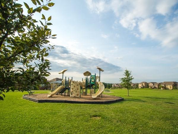 Community park in Benson Place Fieldstone