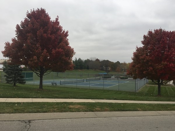 Residential tennis courts in the fall