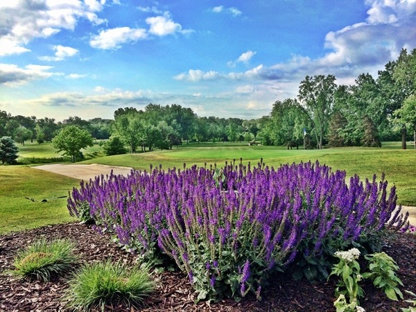 Overland Park offers many venues for golf membership, both public and private