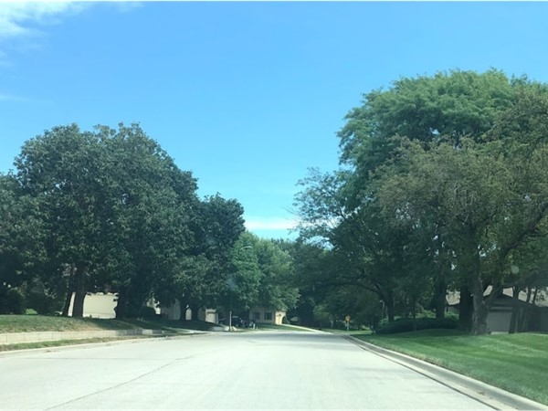 You surely do not want to miss this well-maintained neighborhood of Raintree