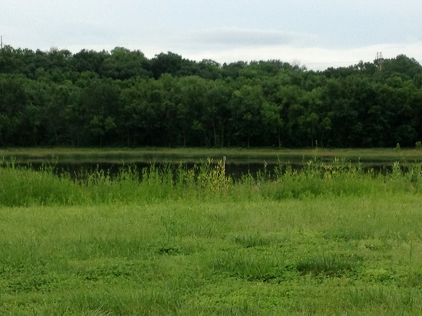 Peaceful view, Tallgrass at Wilderness Valley, note the crane in the distance (bird, not machinery)