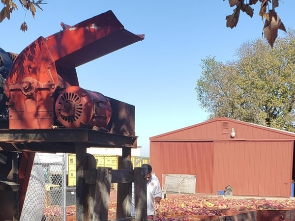 Louisburg Cider Mill - More apples than you can image