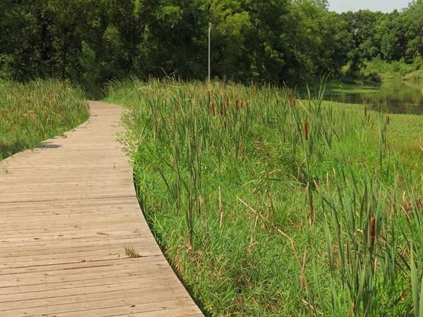 The Boardwalk at Hidden Woods Park