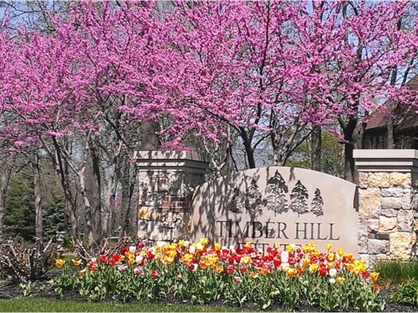 Timber Hills Estates springtime!