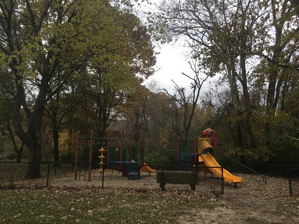 One of many amenities of the Brooktree neighborhood; a playground where kids can safely play