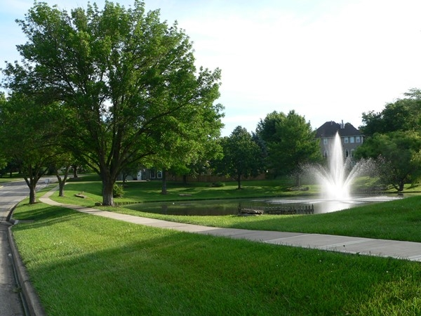 Somerset Estates offers beautiful homes, scenic green space, a short distance to Fleming Park