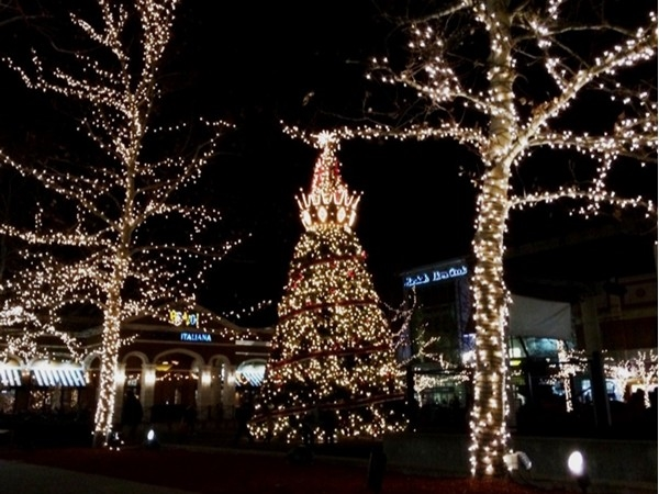 Crowns, crowns, crowns are the theme throughout the holidays in magical Zona Rosa