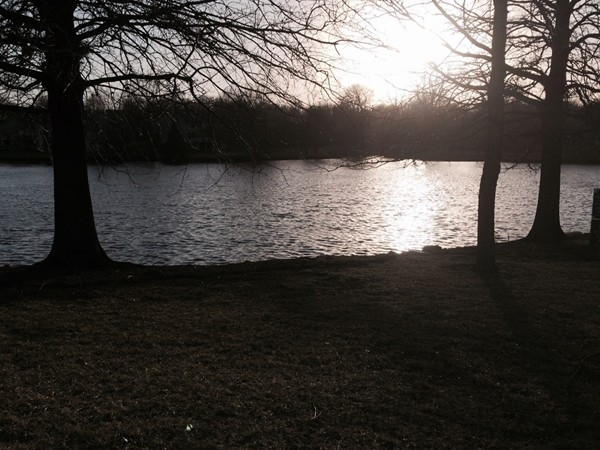 Walking the common grounds around the lake in Waterfield is a real treat in all seasons