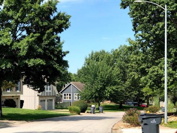 The quiet, green neighborhood of Millcreek Woods