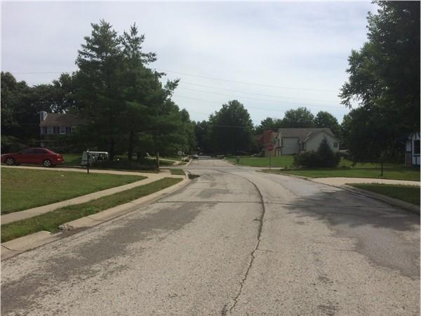Spacious yards/lots in Hunter's Ridge subdivision