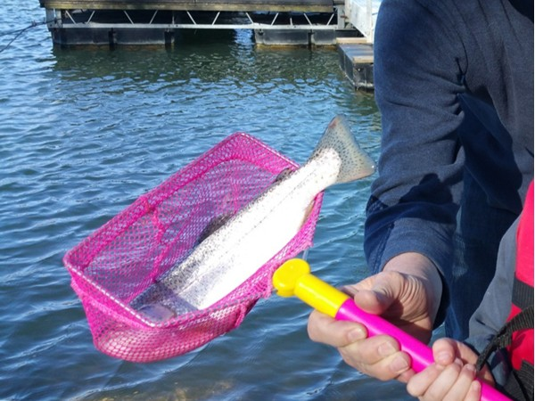 Rainbow trout fishing is fun for the whole family on Riss Lake