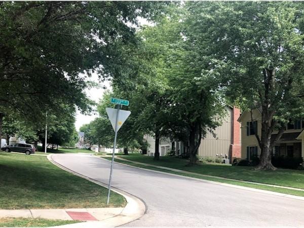 The quiet and friendly neighborhood of Raintree