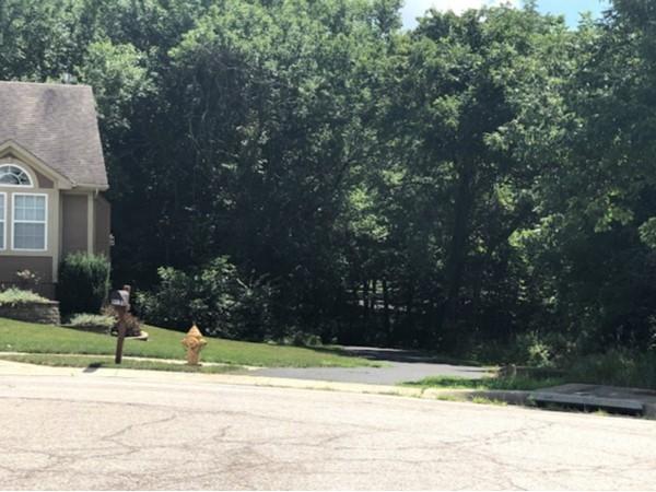 The green neighborhood of Hilton Creek