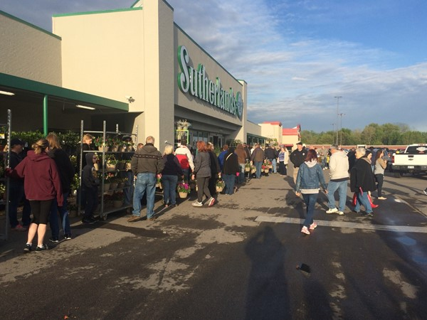 Plant sale at Sutherlands in Liberty. This event is popular every spring in the metro area
