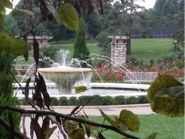 The Loose Park fountain and rose garden. This is such a wonderful park in the heart of Brookside