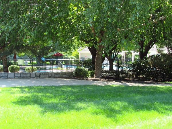 Park like setting of Wilshire pool