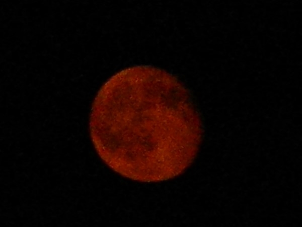 Amazing how red the moon was recently