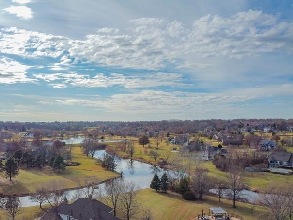 Switzer Lake Estates, December 2019