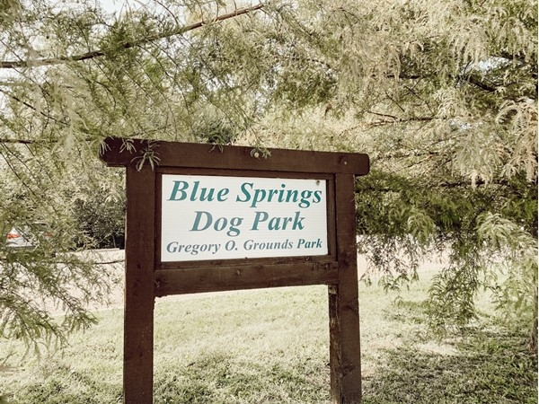 Take your furry friends out for some exercise at Blue Springs Dog Park off of NE Jefferson Street