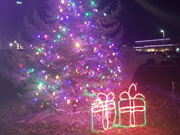 Mayor's Christmas Tree Lighting. So much to do in our community during Christmas