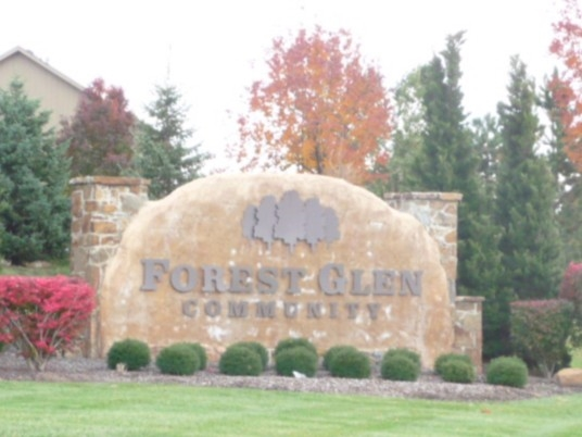 Fall colors in Forest Glen