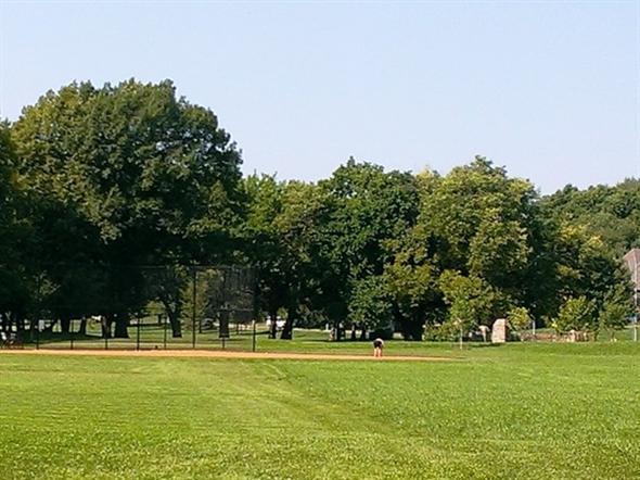 Roe Park