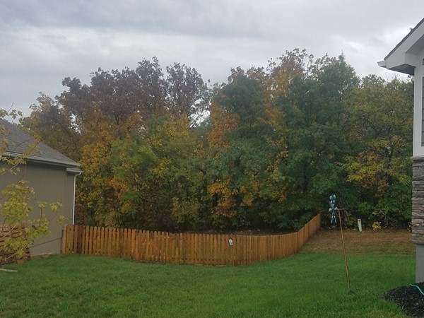 Got to love the first days of fall