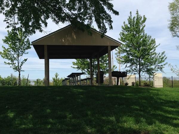 Oaks of North Brook community picnic area