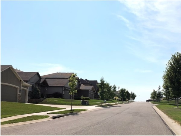 The desirable and quiet neighborhood of College Meadows