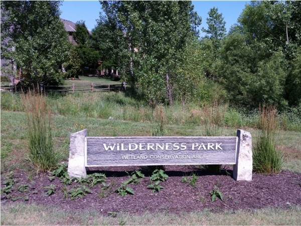 Wetland Conservation Area in Wilderness Park