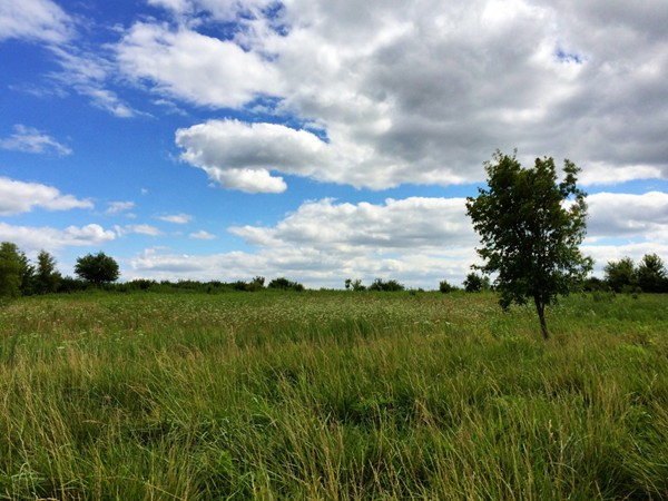 Platte County with its rolling hills and beautiful landscapes is a great place to call home