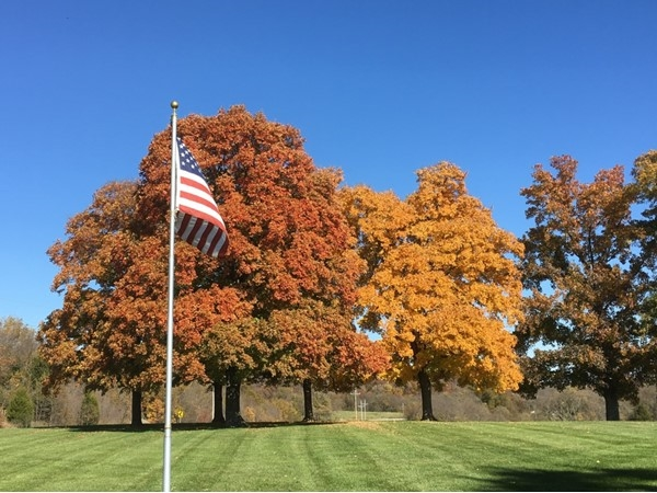 What a beautiful fall we had this year in Platte County