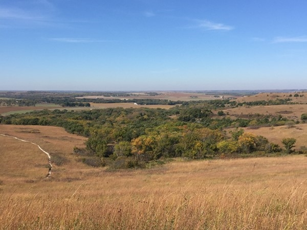 The Konza Prairie Nature Trail offers several hiking paths