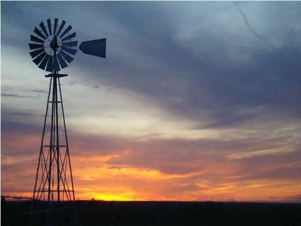 Olathe sunsets