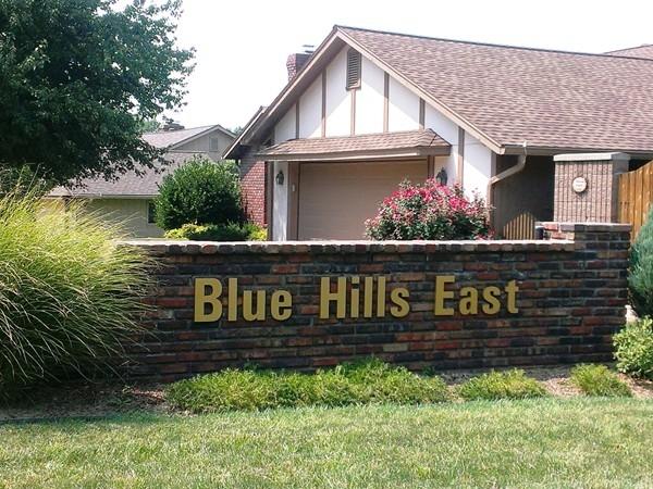 Blue Hills East