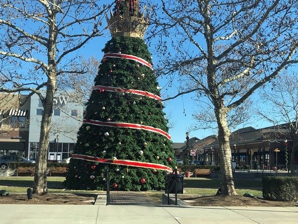 It's beginning to look a lot like Christmas in Zona Rosa 2019