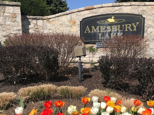 Spring at Amesbury Lake Community
