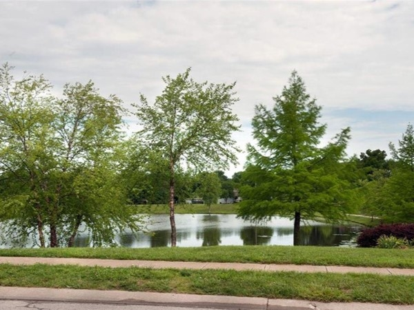 A lake in Belton near Summerset Hills Subdivision