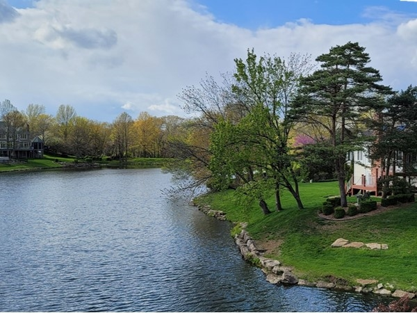 Nottingham Estates in springtime