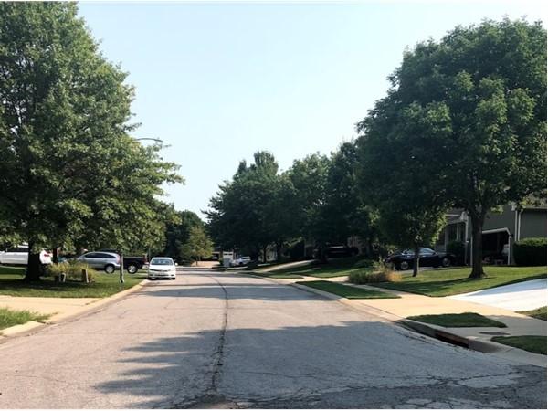 The beautiful neighborhood of Regency Place