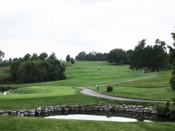 A beautiful shot up the fairway at Adams Pointe Golf Club