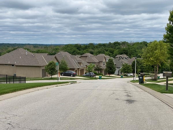 Street view of Riverview